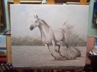caballo libre