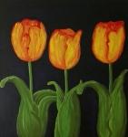 Tulipan rojo