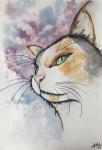 Miradas de gato