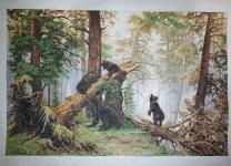 Osos en el bosque