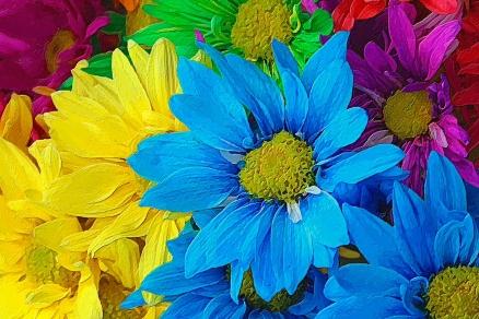 Cuadro flores (bme011601)