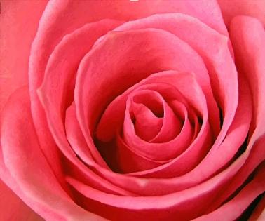 Cuadro flores (bme011701)