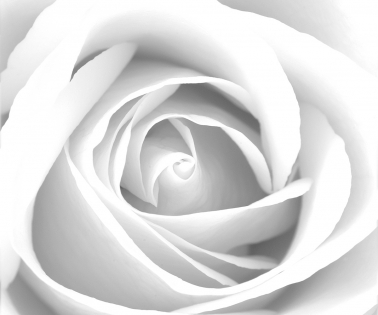 Cuadro flores (bme160001)