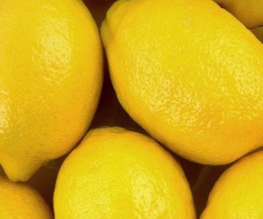 Cuadro limones (bme160031)