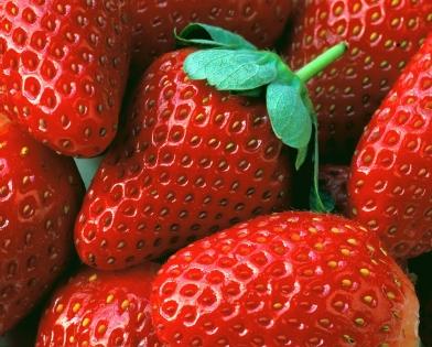 Cuadro fresas (bme160032)