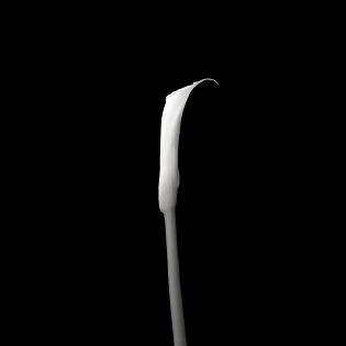 Cuadro fotografia blanco y negro (bme170045)