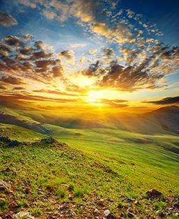 Cuadro paisaje pradera (bfl18602380)