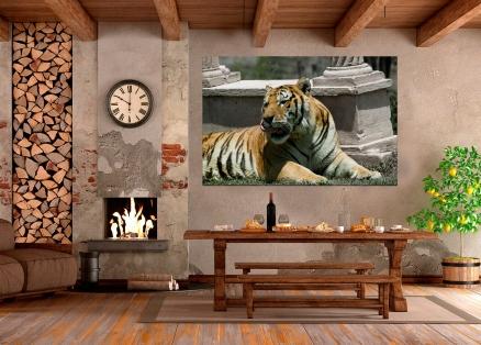 Cuadro tigre entre columnas (bgca0050)