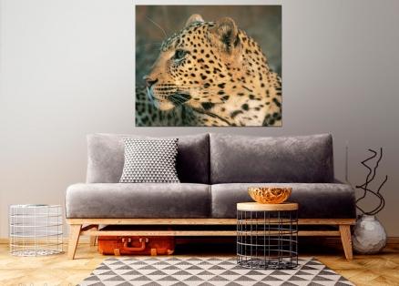 Cuadro leopardo (bgca0061)