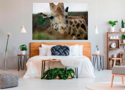 Cuadro jirafa (bgca0073)