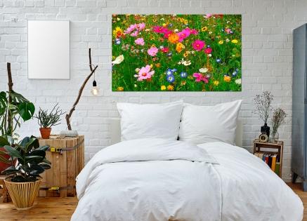 Cuadro flores silvestres (bpx0101)