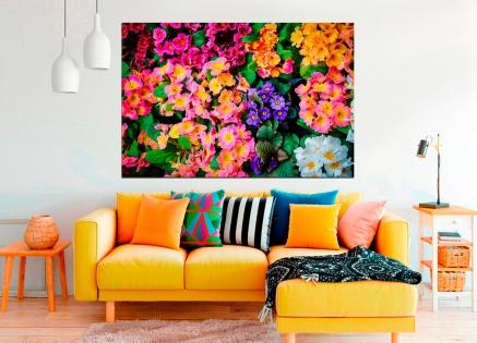 Cuadro flores y colores (bpx0106)