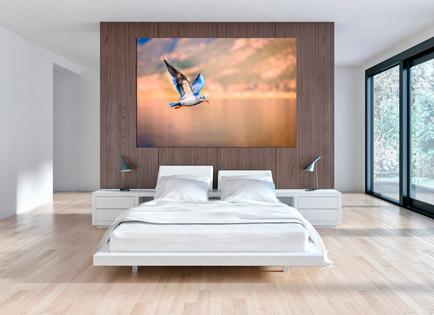 Cuadro volando el cielo (bpx0204)
