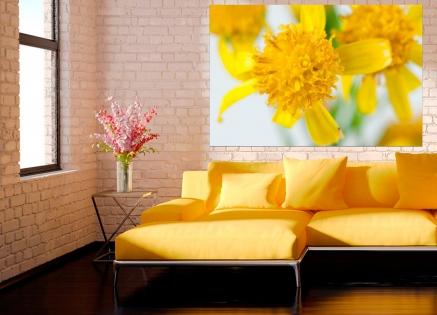 Cuadro flor amarilla (bept1050)