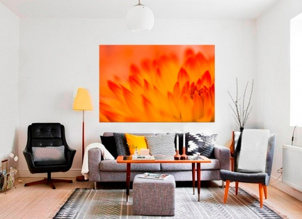 Cuadro flor naranja (bme160024)
