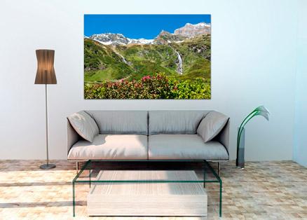 Cuadro montañas y flores (bfl162526418)