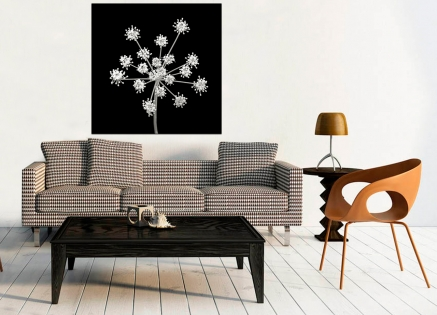 Cuadro flor blanco y negro  (bme170041)