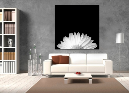 Cuadro fotografia blanco y negro (bme170047)