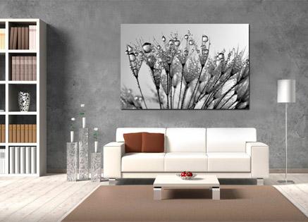 cuadro flores blanco y negro (bfl46130139)