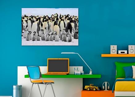 Cuadro pingüinos (bfl27406955)