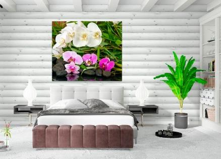 Cuadro orquideas (bfl56061789)b