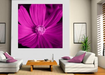 Cuadro flor morada (bgca0706)