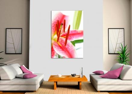 Cuadro flor (bme013002)