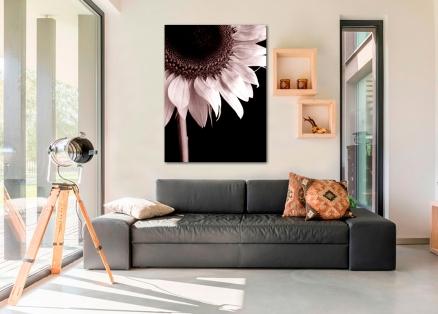 Cuadro flor fotografia (bme160157)