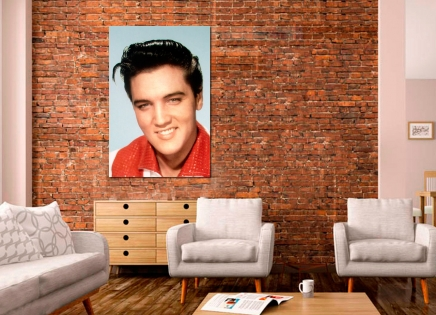 Cuadro Elvis (bme160192)