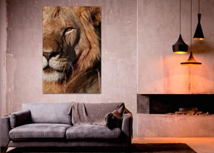 Cuadro león (bme180075)