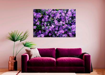 Cuadro flores lila (bpx0109)