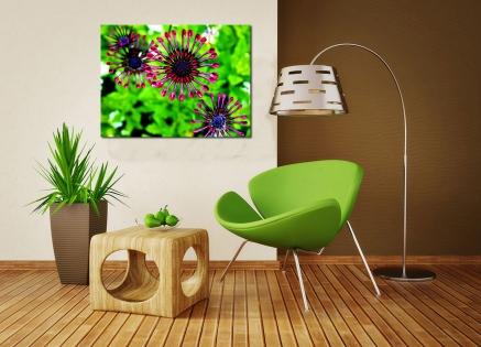Cuadro flor morada (bpx0130)