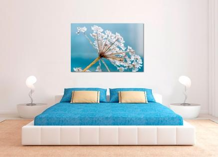 Cuadro flor helada (bpx0144)