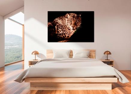 Cuadro leopardo (bpx0209)