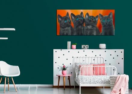 Cuadro gatitos (bpx0228)