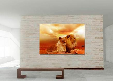 Cuadro pareja de leones (bpx0229)