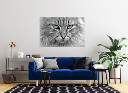 Cuadro gato (bpx0236)
