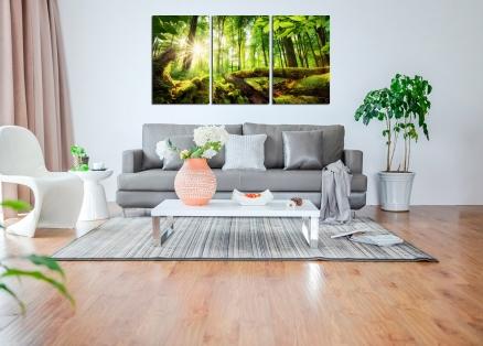Cuadro triptico bosque frondoso (bfl142916052)