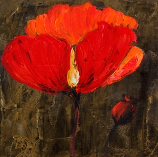 Cuadro flor amapola (b105)