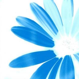 Cuadro flor azul (bept31)