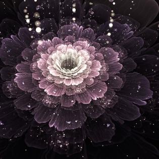 Cuadro flor (bfl57185040)