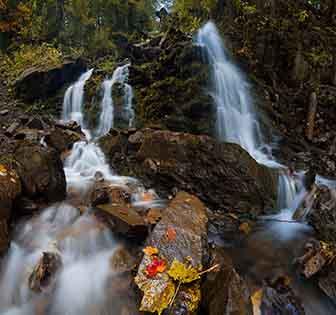 Cuadro paisaje naturaleza campestre (bfl147175666)