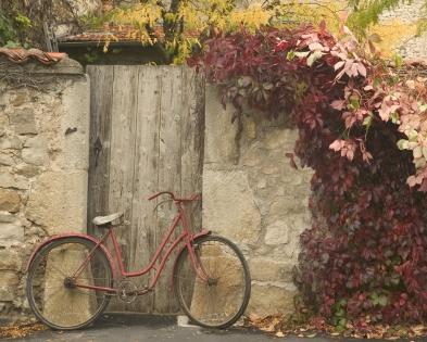 Cuadro bicicleta rosa (bgca0402)