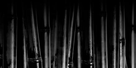 Cuadro cañas negras vanguardia (bgca0512)