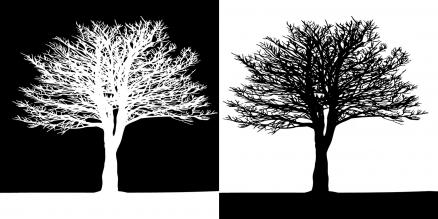 Cuadros arboles blanco y negro (bme170207)