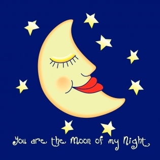 Cuadro luna (bme190030)