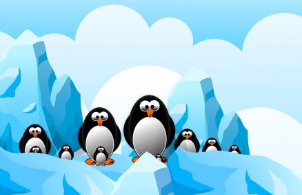 Cuadro pinguinos (bpx0217)