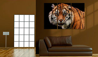 Cuadro triptico tigre (bpka1-n1534-dkx)